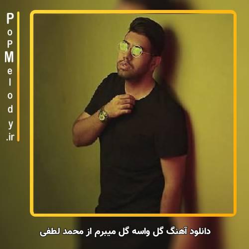دانلود آهنگ محمد لطفی گل واسه گل میبرم